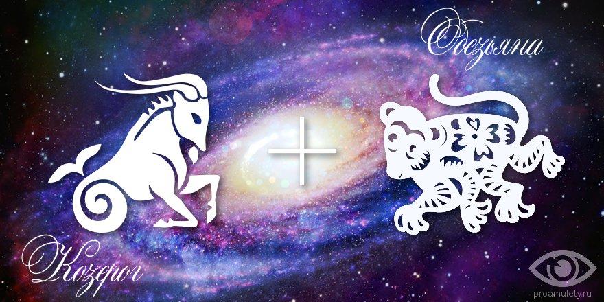 zodiak-kozerog-obezjana-muzhchina-zhenshhina-harakteristika