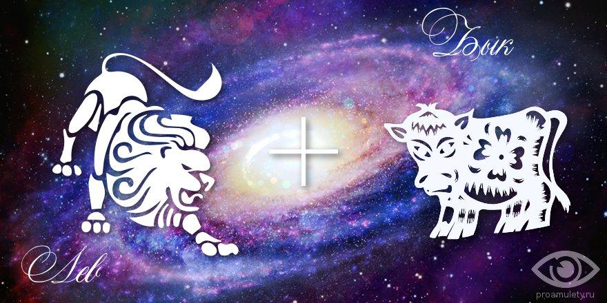 zodiak-lev-byk-muzhchina-zhenshhina-harakteristika