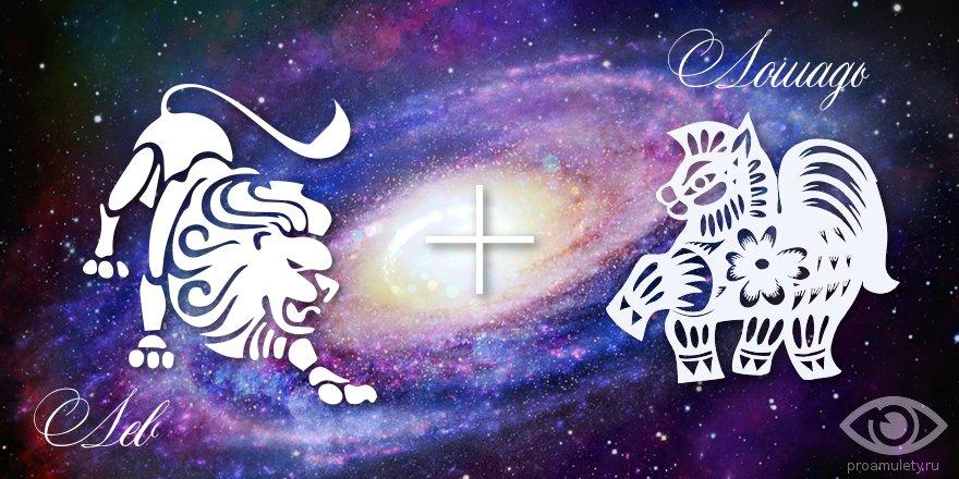 zodiak-lev-loshad-muzhchina-zhenshhina-harakteristika
