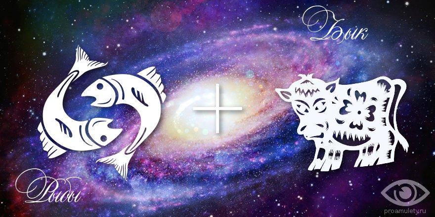 zodiak-ryby-byk-muzhchina-zhenshhina-harakteristika