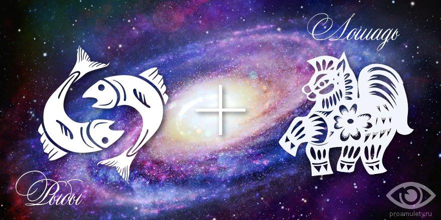 zodiak-ryby-loshad-muzhchina-zhenshhina-harakteristika