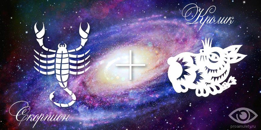 zodiak-skorpion-krolik-kot-muzhchina-zhenshhina-harakteristika