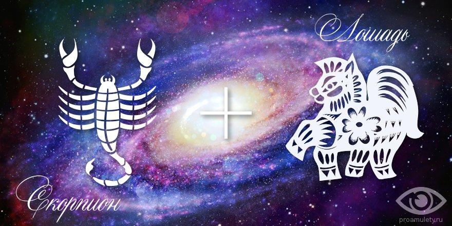 zodiak-skorpion-loshad-muzhchina-zhenshhina-harakteristika