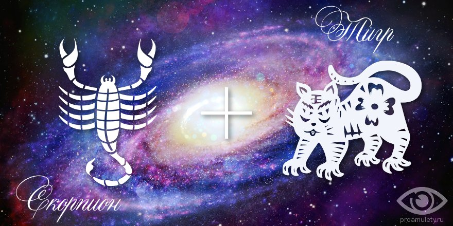 zodiak-skorpion-tigr-muzhchina-zhenshhina-harakteristika