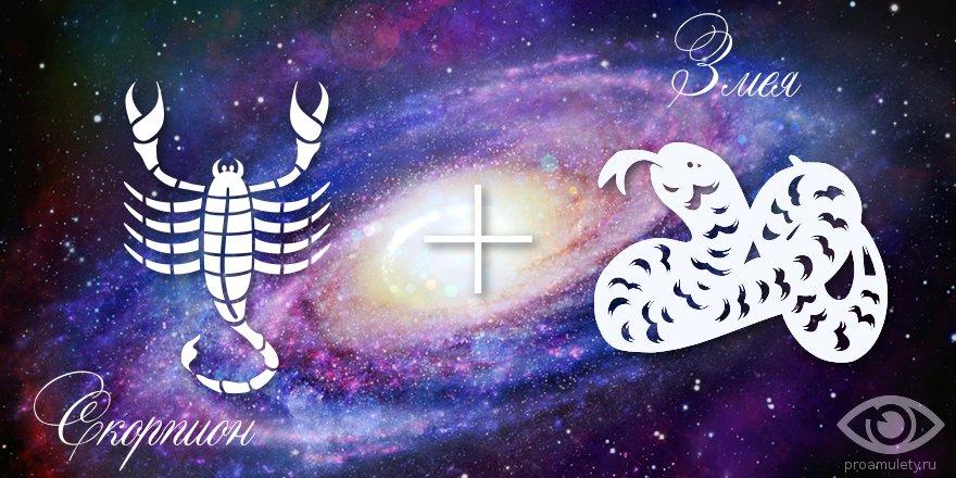zodiak-skorpion-zmeja-muzhchina-zhenshhina-harakteristika