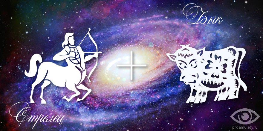 zodiak-strelec-byk-muzhchina-zhenshchina-harakteristika