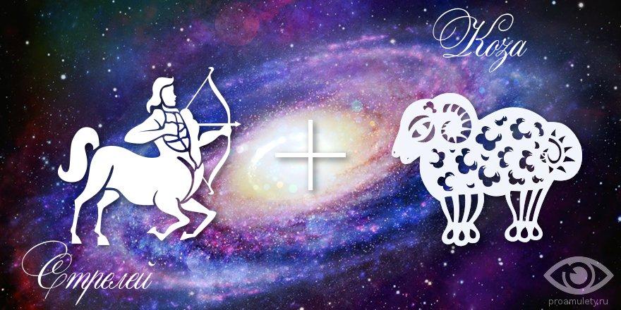 zodiak-strelec-koza-ovca-muzhchina-zhenshhina-harakteristika