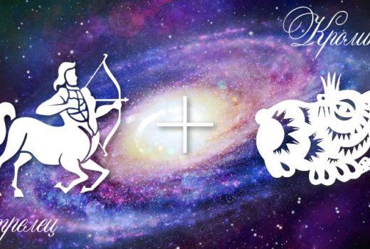 zodiak-strelec-krolik-kot-muzhchina-zhenshchina-harakteristika
