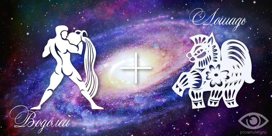 zodiak-vodolej-loshad-muzhchina-zhenshhina-harakteristika