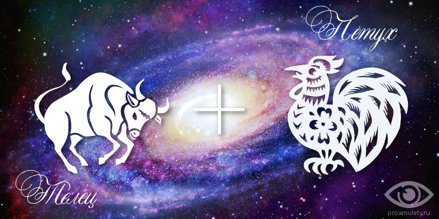 zodiak-telec-petuh-muzhchina-zhenshchina-harakteristika