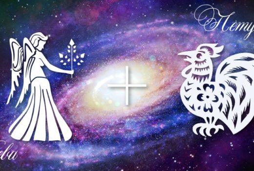 zodiak-deva-petuh-muzhchina-zhenshchina-harakteristika