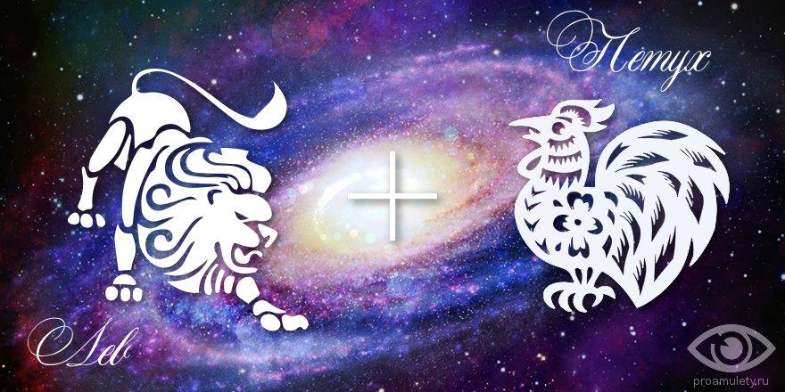 zodiak-lev-petuh-muzhchina-zhenshchina-harakteristika